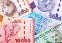 tanzania banknotes