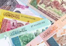 sudan banknote