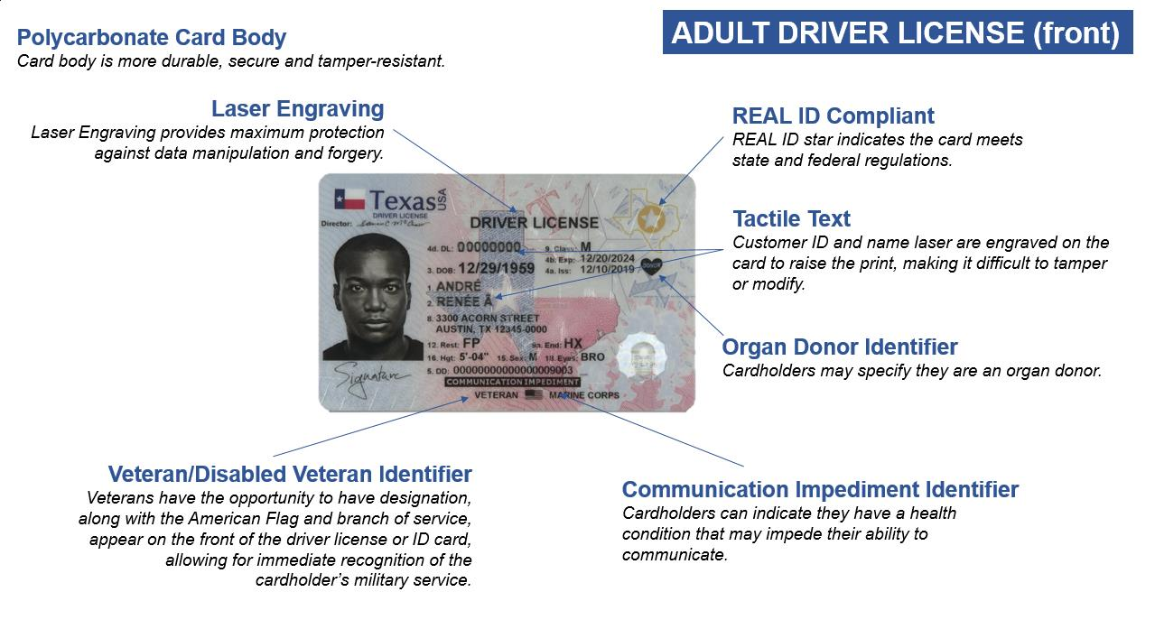 Adult Driver License Front